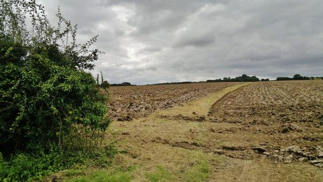 Freshly ploughed field at end of Fanthorpe Lane