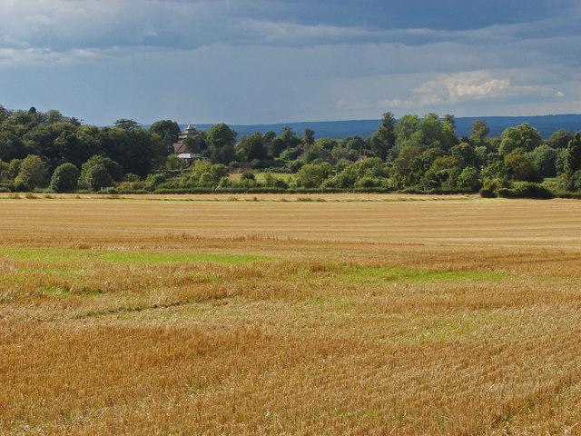View towards West Clandon