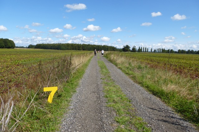 7 km mark