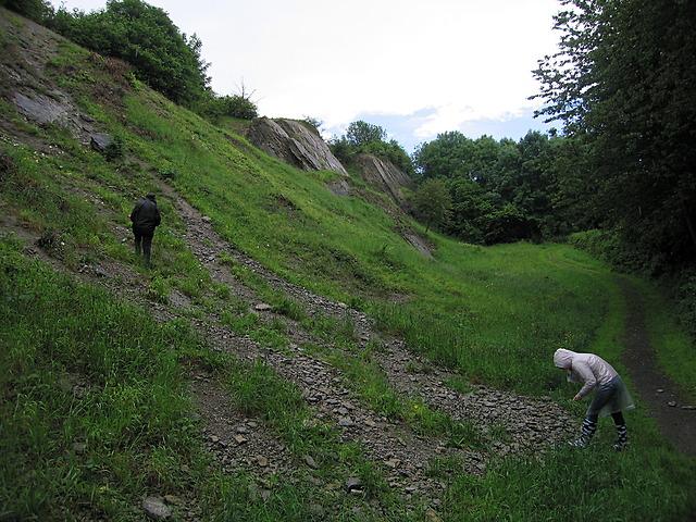 Fossil trench, Wren's Nest