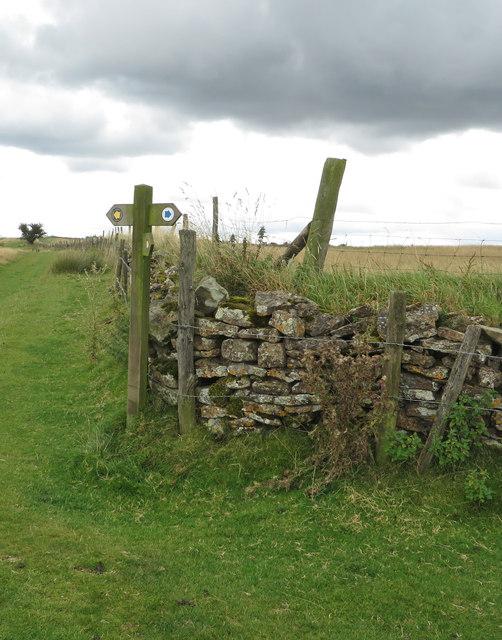 Fingerpost, Levisham Moor