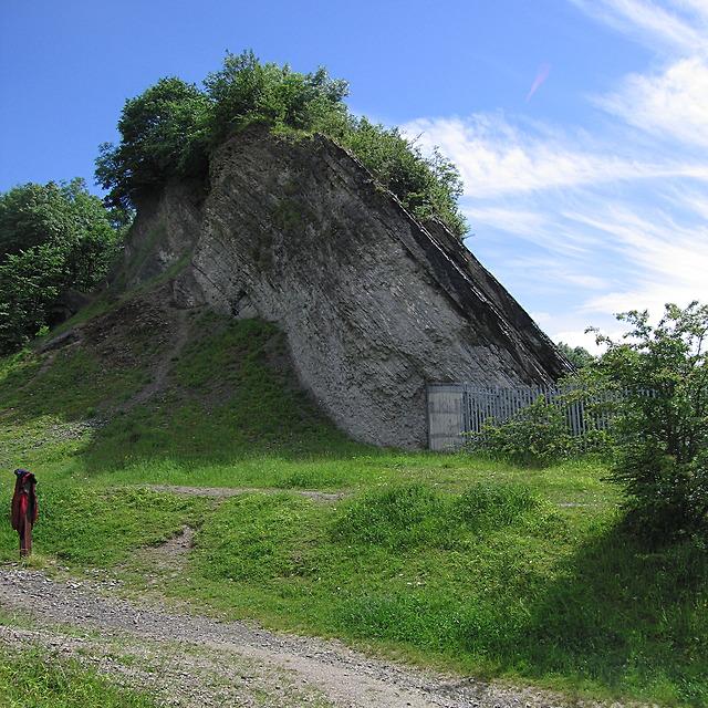 Nodular Limestone cliff, Wren's Nest