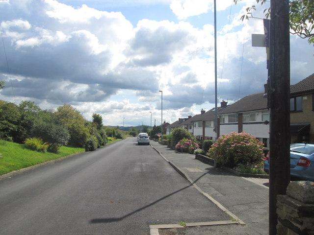 Arlies Lane