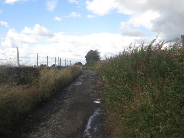 Lane towards Higher Hartshead