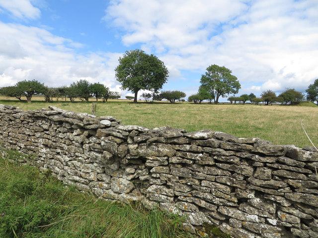 Drystone wall, Braygate Lane