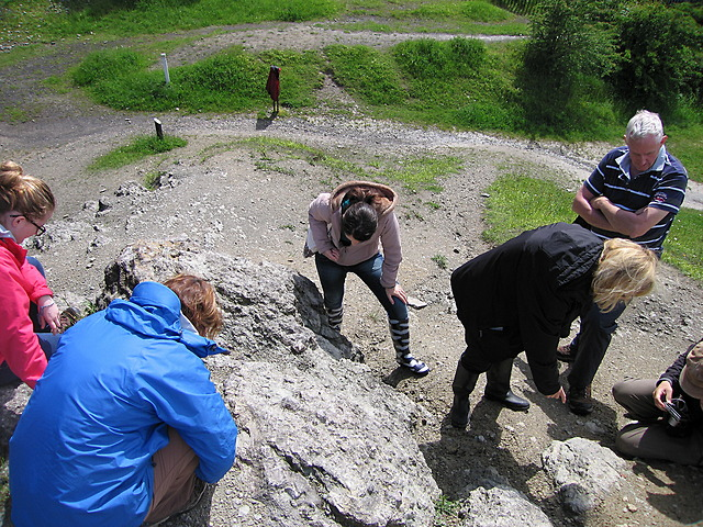 Looking for fossilised corals, Wren's Nest