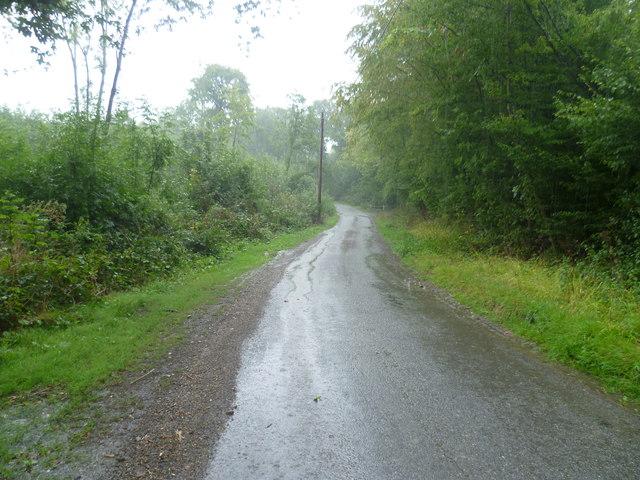 Halden Lane in the rain