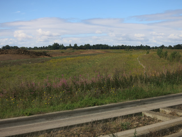 Northstowe, trees gone