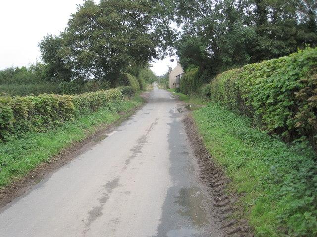 Moor Lane looking towards Bilbrough