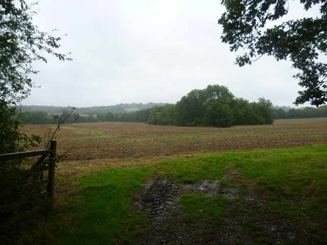 View from Halden Lane near Beston Farm