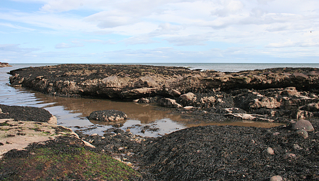 Near Whiting Ness