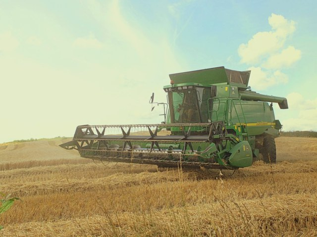 Barley harvesting in small field to west of Upholland Road, Billinge