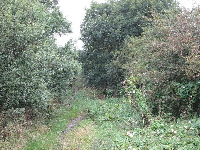 Langton  Lane  (track)