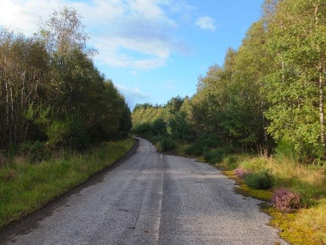 Old road by Garrick Bridge