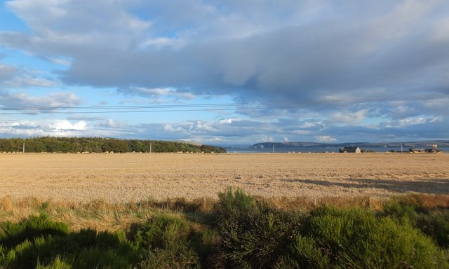 Harvest field by Kilmuir