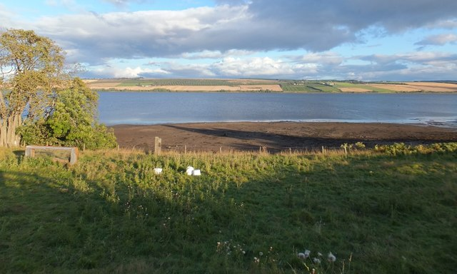 Field and shore by the Cromarty Firth