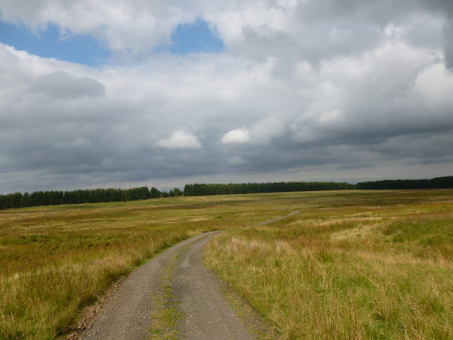 Moorland track near Listonshiels