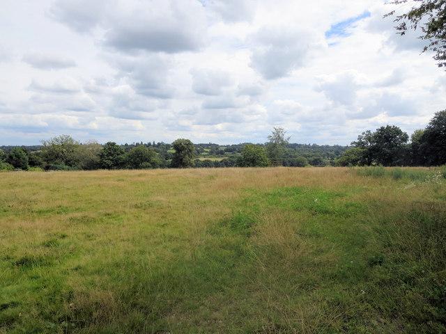 Rough pasture south of Enborne Copse