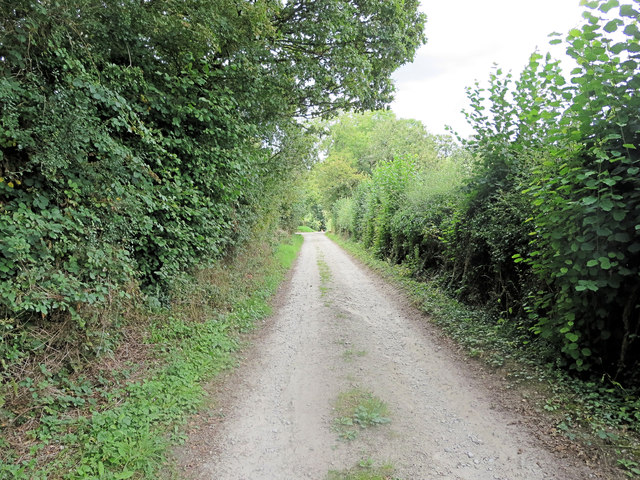 Footpath/track to Benham Bridge