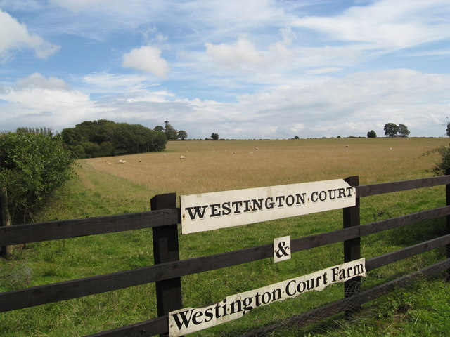 Farmland at the entrance to Westington Court