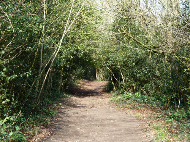 Path parallel with Woodmansterne Road