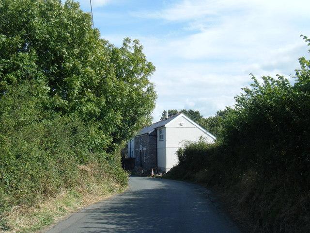 Lane approaching Burry Farm