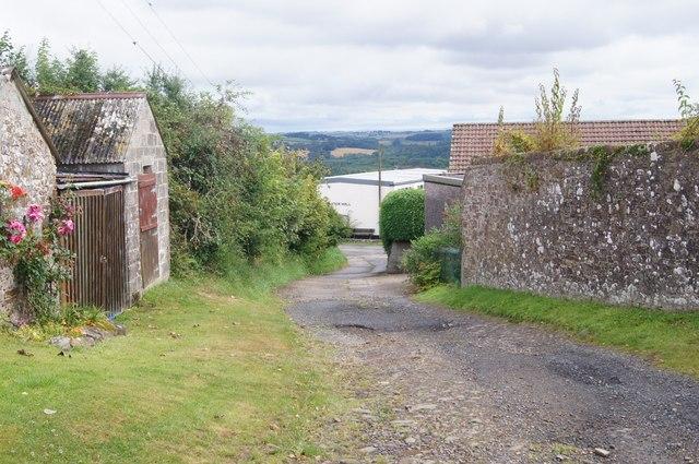 Cott Lane
