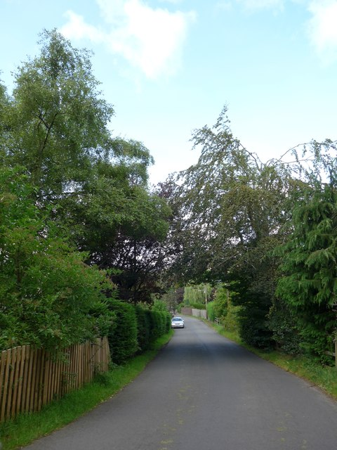 A greener section of Sauchie Road