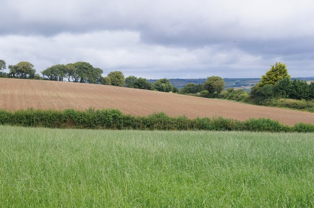 Farmland west of Petrockstowe
