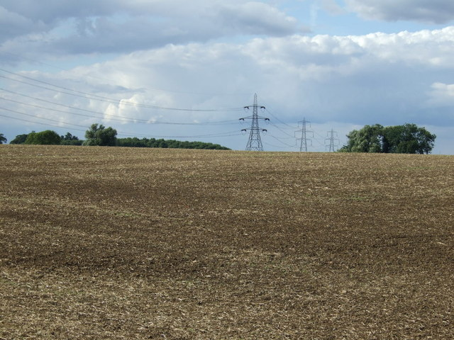 Field and power lines, Sheepwalk Farm