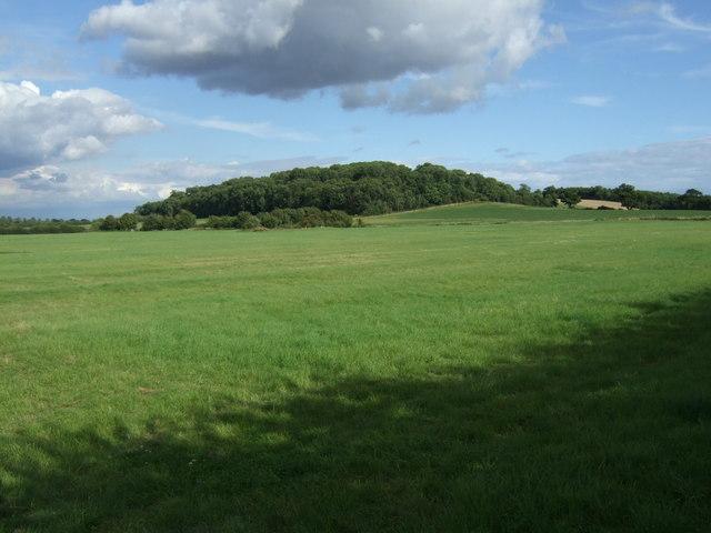 Farmland towards Chesterton Hill