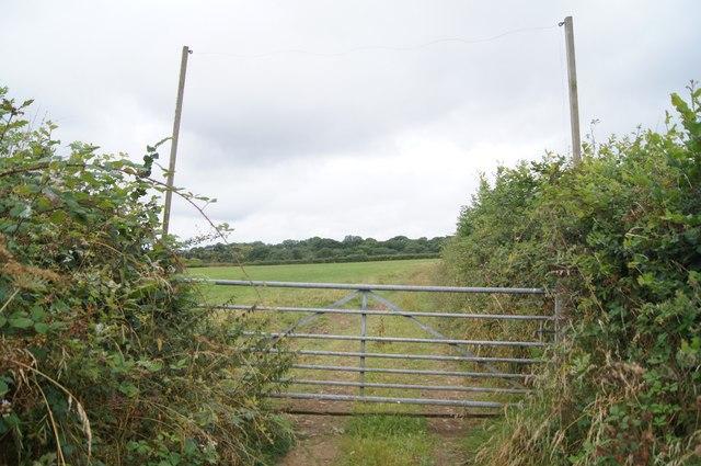Gate on Cott Lane