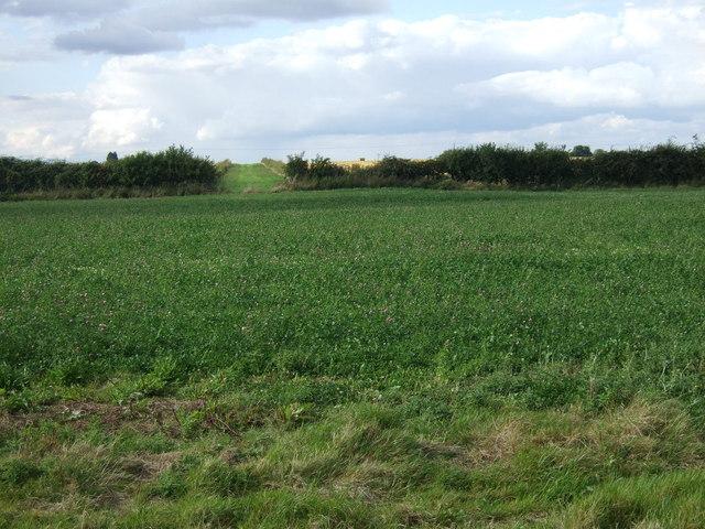 Farmland near Chesterton