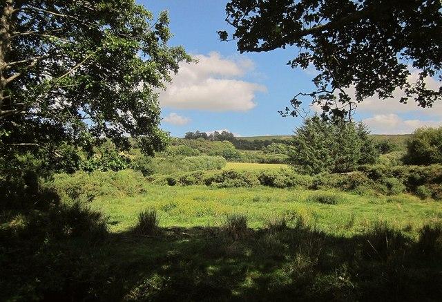 Across the East Webburn