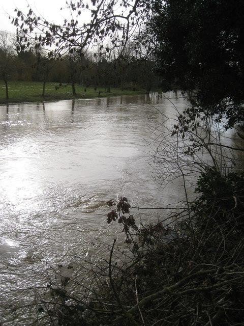 River Avon by Emscote Gardens, Warwick 2014, February 2: turbulence by the bank