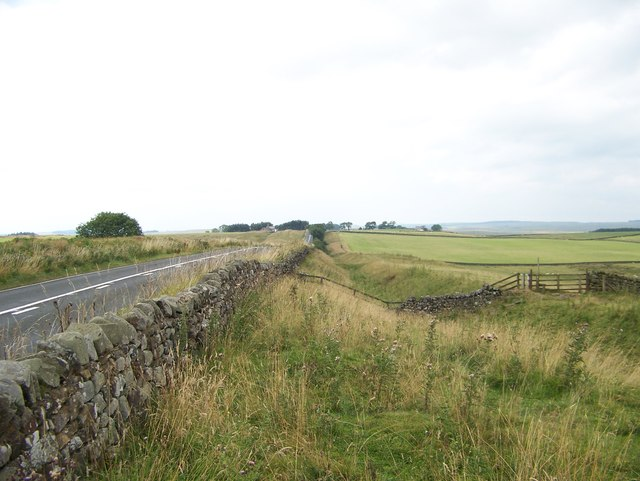 Looking west at the vallum beside the B6318