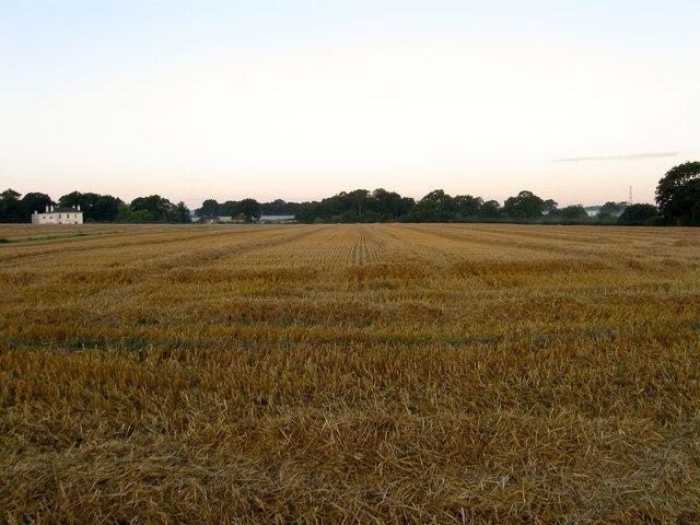 Slipe Field