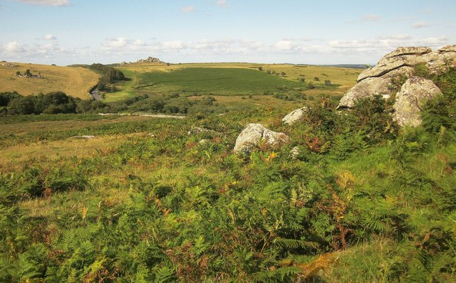 Rocks on Holwell Down