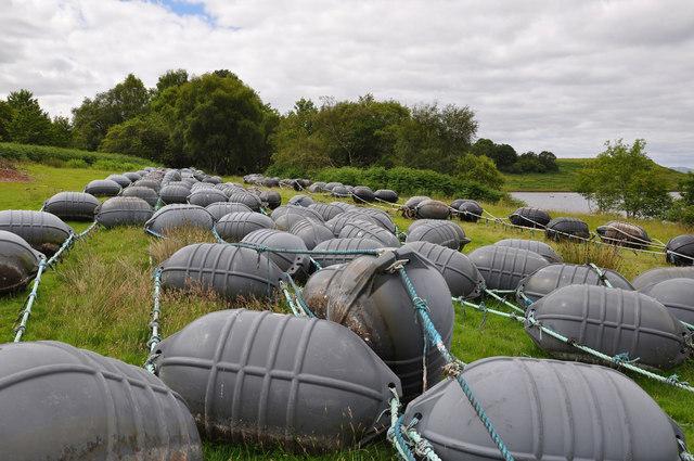 Buoys on land
