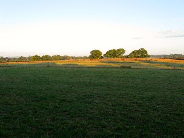 Knowl Field