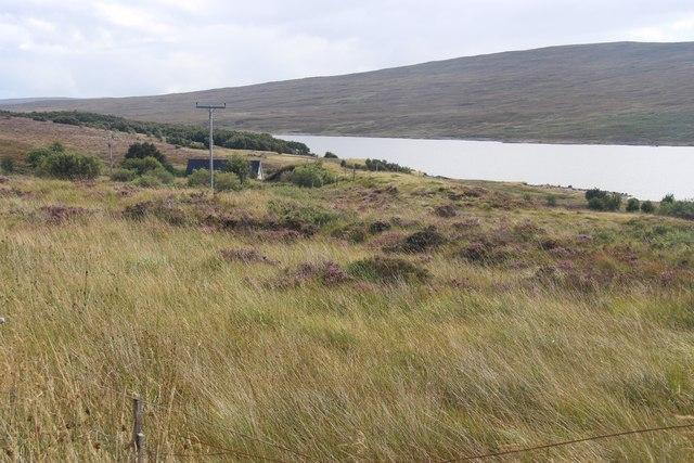 Moorland at Carrachan on Loch Shin