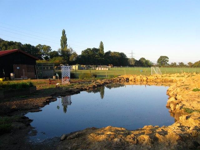 Hither Stapleys Field/Further Stapleys Field