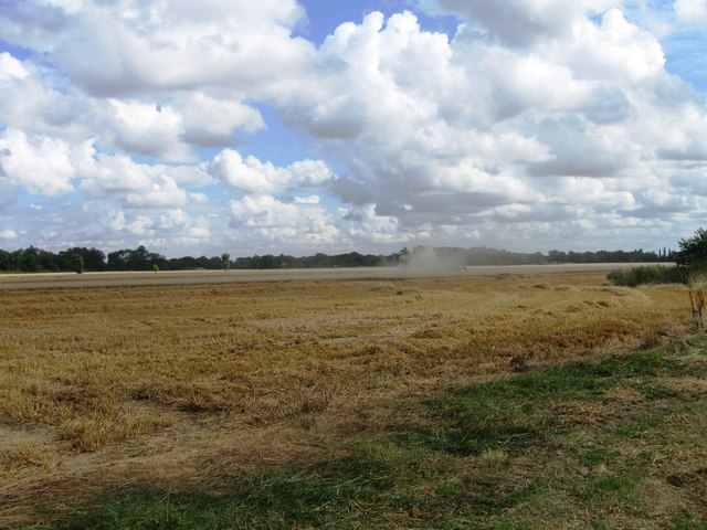 Harvesting, Hill Farm