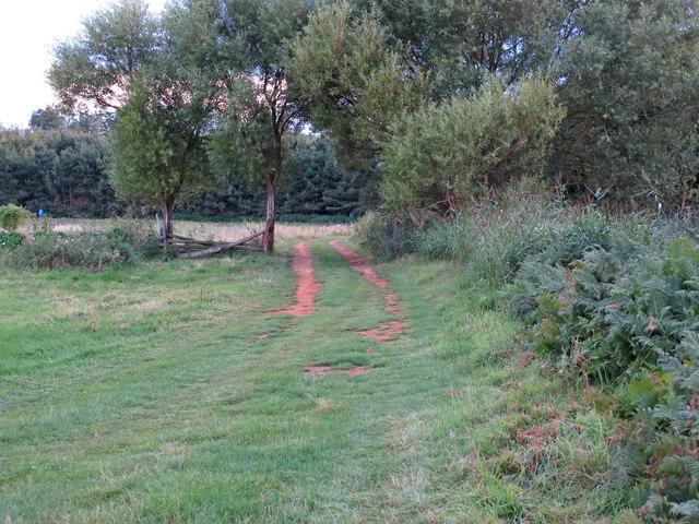 Public footpath on farm track, Sudbourne Marshes