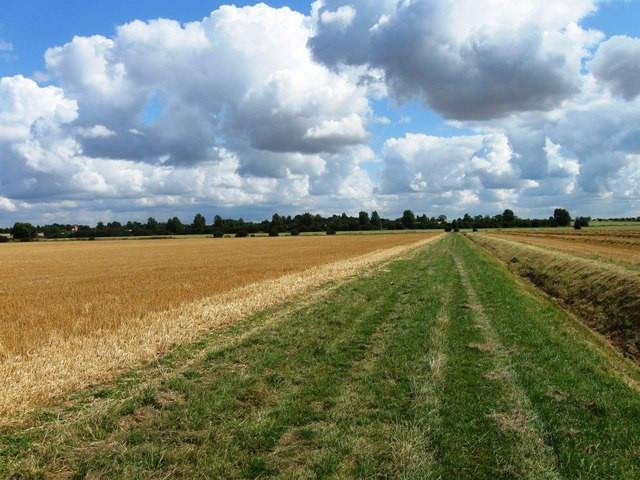 Fields and ditch