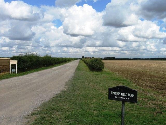 Road to Rowston Field Farm