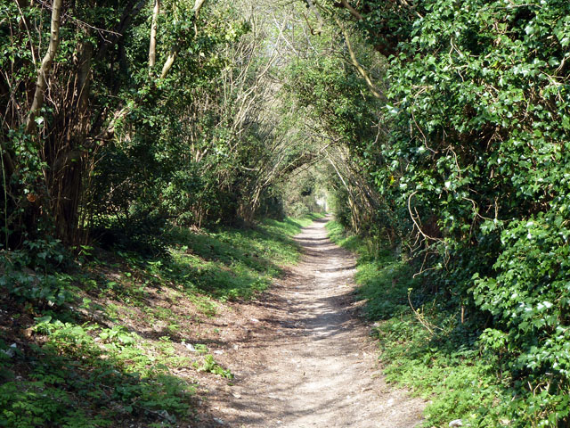 Bridleway continuation of Grove Lane