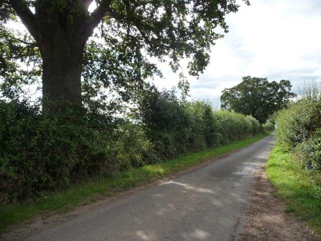 New Inn Lane [1]