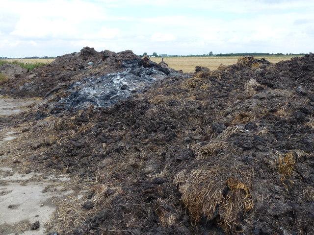 Muck heap and burnt straw on Burtey Fen