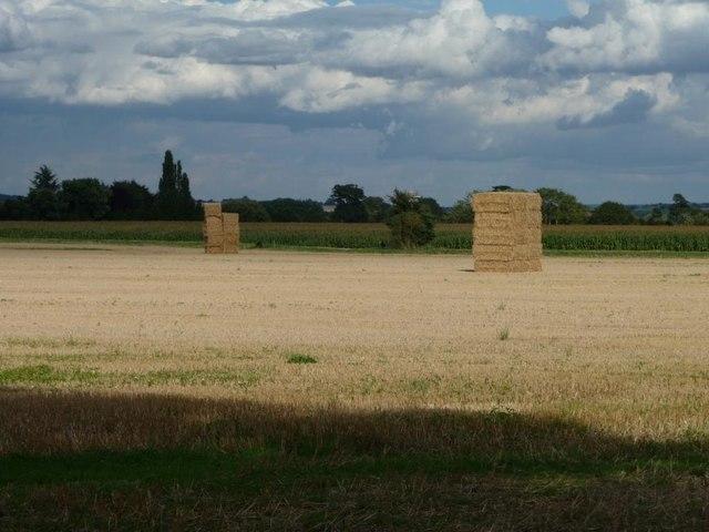 Stacks of straw bales, off New Inn Lane